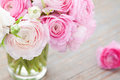 Buttercup white and pink ranunculus in vase on wooden background Royalty Free Stock Photo
