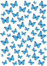 Butterflies background with isolated blue Royalty Free Stock Image