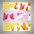 Butterflies banners set Royalty Free Stock Photo