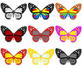 Butterflies botany set on a white background Royalty Free Stock Photo
