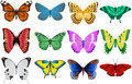 Butterflies a collection of colorful Stock Images