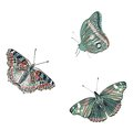 Butterflies cute set of realistic vector three Stock Image