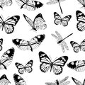 Butterflies and dragonflies seamless pattern, monochrome vector background, coloring book. Black and white various insects on a wh
