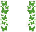 Butterflies illustrated