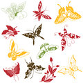Butterflies ornaments set vector of on white background Stock Image