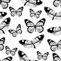 Butterflies seamless pattern, monochrome vector background, coloring book. Black and white various insects on a white backdrop. Fo
