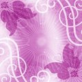 Butterflies violet background Royalty Free Stock Images