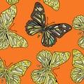 Butterflies in zentagle style
