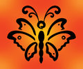 Butterfliy on orange background Royalty Free Stock Photography
