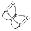 Butterfly animal insect fly thin line