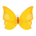 butterfly animal insect fly