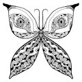 Butterfly artistic abstract Royalty Free Stock Photo
