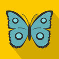 Butterfly with circles on wings icon, flat style