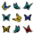 Butterfly of colorful icon set vector illustration.