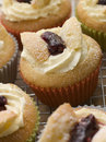 Butterfly Cup Cakes with Strawberry Jam Stock Photos