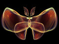 Butterfly design unreal series abstract element on the subject of imagination nature and Stock Images