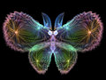 Butterfly design unreal series abstract element on the subject of imagination nature and Royalty Free Stock Photos