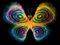 Butterfly design unreal series abstract element on the subject of imagination nature and Stock Image