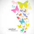 Butterfly design on white background vector illustration Royalty Free Stock Photos