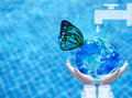 Butterfly drinking water from blue globe on hand.  Saving water concept Royalty Free Stock Photo