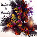 Butterfly floral poster or illustration on tropical theme with p