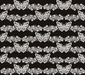 Butterfly and floral white lace seamless pattern on black background Royalty Free Stock Photo