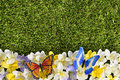 Butterfly flower border background, grass copy space, spring meadow scene Royalty Free Stock Photo