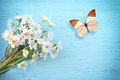 Butterfly and flower daisy on a wooden background Royalty Free Stock Photo