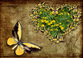 Butterfly in form heart grunge Stock Images