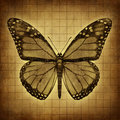 Butterfly grunge texture monarch on an old parchment paper with open wings in a top view as migratory insect butterflies for Stock Images