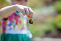 Butterfly in hand Royalty Free Stock Photo