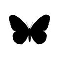 Butterfly insect black silhouette animal Royalty Free Stock Photo