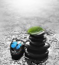 Butterfly, light and balanced stones. Green leaf. Spa concept Royalty Free Stock Photo