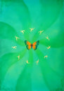 Butterfly and litle gold dancing ellf on green background. Painting and graphic design.