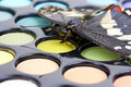 Butterfly on make-up eyeshadows Royalty Free Stock Images