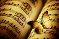 Butterfly and music Royalty Free Stock Photo