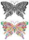 Butterfly ornament color and black Royalty Free Stock Photo