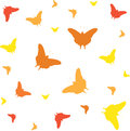 Butterfly pattern vector illustration of the Stock Images