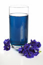 Butterfly pea drink for health in glass on white background thai herb isolated or asian pigeonwings flower Royalty Free Stock Photo