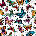 Butterfly seamless pattern. Cute colorful butterflies, beautiful insects retro spring design. Fabric ornament, wallpaper Royalty Free Stock Photo