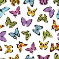 Butterfly seamless pattern. Floral garden print, seamless graphic background with butterflies and flowers. Vector hand Royalty Free Stock Photo