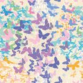 Butterfly. Seamless vector pattern.