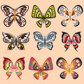 Butterfly set in vector