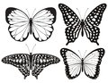 Butterfly Silhouette Icons Set...