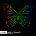 Butterfly silhouette of lights on black background Royalty Free Stock Photo