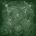 Butterfly,sun,clouds on chalkboard background Royalty Free Stock Photo