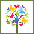 Butterfly tree Stock Images