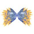 Butterfly two wings.