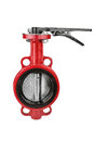 Butterfly valve Royalty Free Stock Photo