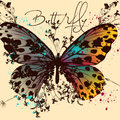 Butterfly vector design with colorful wings